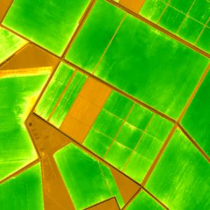 prva digitalna farma